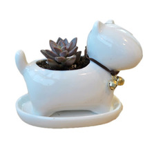 Mini Ceramic Indoor Plant Pots for Sale