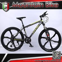 2015 One wheel MTB