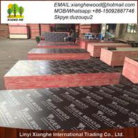 TEGO plywood, 18mm concrete formwork plywood, construction plywood sheet