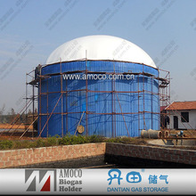 100KW food waste/animal waste digester for biogas power plant made in china