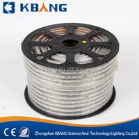 LED Strip Light RGB 3 In 1 AC220V High Voltage Remote Control DMX Rope light CE ROHS