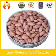 best selling products red coral peanut peanut kernels 24/28 raw organic peanuts