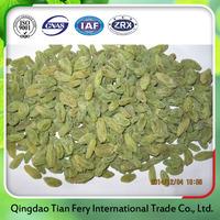 Top quality organic dried green raisins