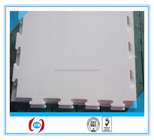 UHMW-PE Synthetic Ice Rink Panel/Artificial Ice Rink/floor skirting