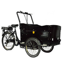 Holland style pedal assisted family electric three wheel children electric tricycle cargo bike