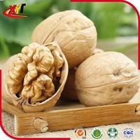 Walnut in shell , Xinjiang thin shell walnut 2015 New crop