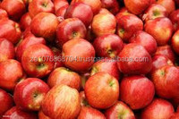 HIGH QUALITY TOP RED APPLES