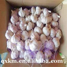 5.5cm fresh garlic natural white garlic/pure white garlic.Common Cultivation Type and Fresh Style Shangdong fresh garlic