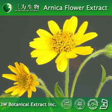 Totally Pure Arnica flower Powder with Low Price