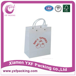 Packaging fashion carry bag
