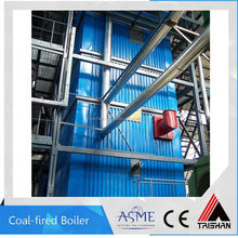 For Southern Asia Market All Sizes Coal Fired Boiler For Home