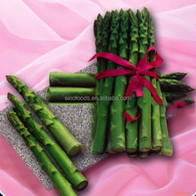China Green Asparagus seeds with competitive price