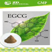 EGCg 15%~98% Green Tea Extract Polyphenol/Catechins/,EGCG/L-Theanine