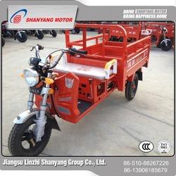 new design 110CC three wheel motorcycle , 1P52FMH reverse trike auto dump