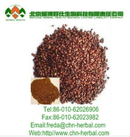 China supplier Pure Natural Organic Grape Seed Extract with high quality