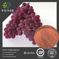 Manufactutrer sell high quality grape seed extract capsule