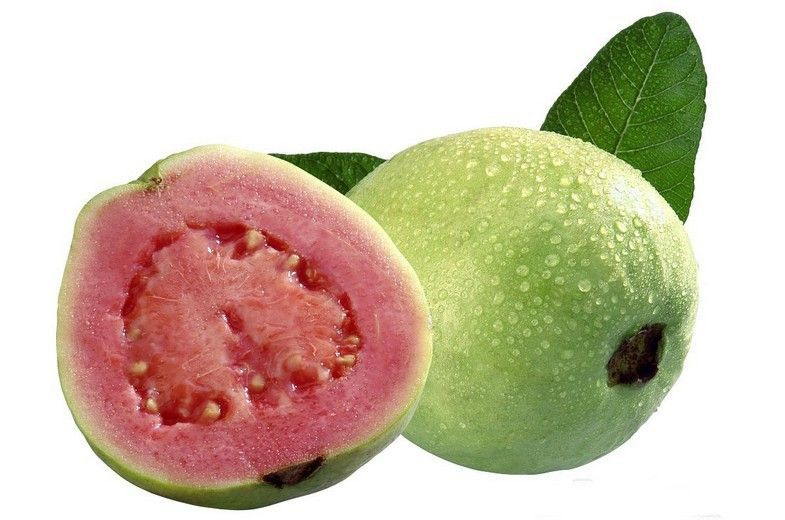 Freeze-dried Guava powder/Guava juice powder