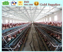 prefab steel structure chicken poultry house