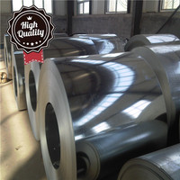 10g-275g 0.5mm earthing strip galvanized corrugated galvanized steel ppgi color coated galvanized coil