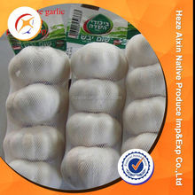 Fresh Pure White Garlic Specifications