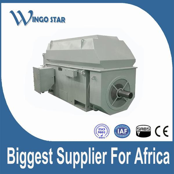 high voltage traction motor for electrical locmotive