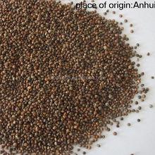 Zi su zi wholesale price and natural for Low Price Purple Perilla Seed
