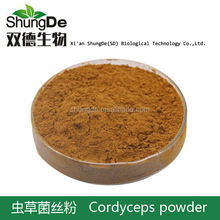 To provide professional, firm offers fungal polysaccharides series products, cordyceps mycelium extract 10% UV