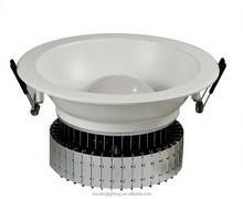 High Power 40W COB LED Downlight surrounds with Aluminum Fins Heat Radiator