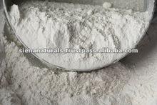 Raw Whey Protein (Powder)