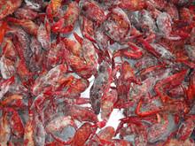 frozen whole cooked crawfish