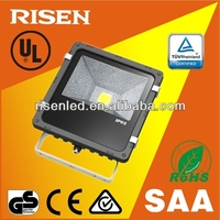 Outdoor 50W CE EMC PSE COB 50 watt led flood light meanwell driver and bridgelux chip IP65 LED flood light with 3 years warranty