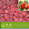 IQF Frozen Strawberry, Good Frozen Berry Fruits Supplier