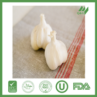 chinese fresh garlic for export