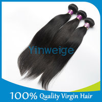 Unprocessed Brazilian Virgin Hair Straight High Quality Free Shedding Free Tangle One Donor Human Hair Extensions Free Shipping
