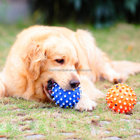 feature pet product,finish pet products