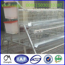 automatic uganda layer chicken cage for breed
