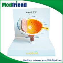 MFM022 Wholesale China Plastic Eyeball