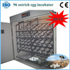 /product-gs/2014-multifunctional-ostrich-eggs-incubator-for-sale-60127133002.html