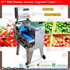 FC-305D Electric Automatic Coconut Cutter Slicer Dicer Machine, Coconut Chips Machine (#304 stainless steel)......Nice!!!!