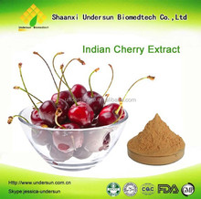100% Pure Natural Tart Cherry Extract Powder with 17% VC