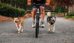 Fashion dog bicycle leash spring dog leash