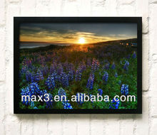 New desigh 3D Flowers Wall Art Painting for sale
