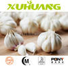 Factory price lipid garlic extract/aged garlic extract/pure white garlic powder