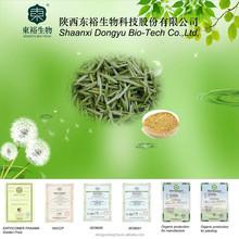 Natural organic Green Tea Extract 95% tea polyphenols
