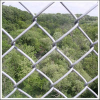 hot sale electro galvanized chain link fence (Anping factory)