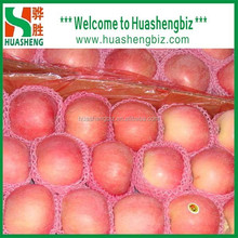 Chinese Fresh Fuji Apple / Fresh Apple Bulk / Red Fuji Apple Price