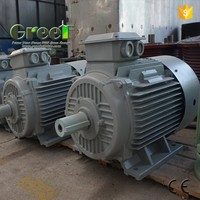 HOT!1 MW AC THREE phase permanent magnet generator for wind power generator, hydro power!