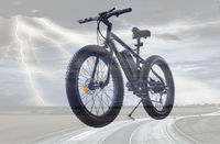 Fat bike,Magic price 48v 500w bike mountain electric tricycle