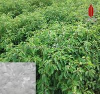 Natural Borneol or Borneolum Plant Extract