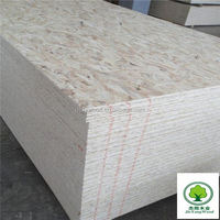 osb3 / OSB manufacturer / China osb3 board